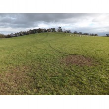 *SOLD SUBJECT TO CONTRACT*      For Sale 11.62 acres (4.70 hectares) Land at Clevelode, Malvern, Worcs. WR13 6PE